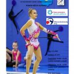 Plakát_Ostravský pohár 2018_1_1